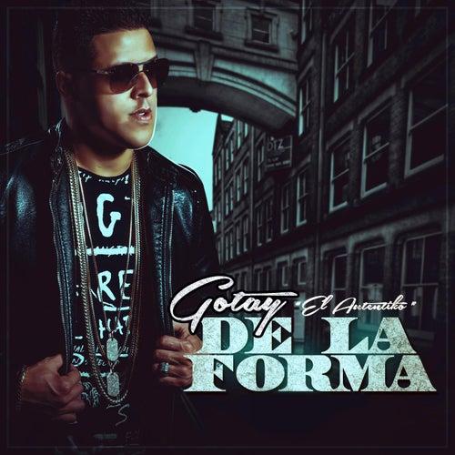 De La Forma by Gotay