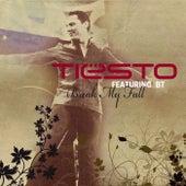 Break My Fall by Tiësto