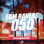 EDM Ravers 050 by Various Artists
