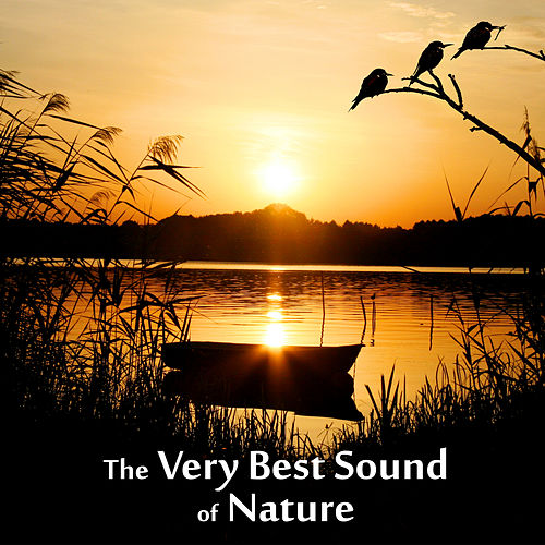 The Very Best Sound of Nature - Birds, Waves, Rain, Sound for Relaxation, Meditation, Healing, Massage, Deep Sleep, Yoga by Sounds Of Nature