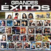 Grandes Exitos a Nuestro Estilo, Vol. 2 by Various Artists