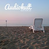 Audiokult Edition 20 by Various Artists