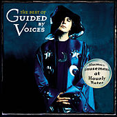 Human Amusements at Hourly Rates - The Best of Guided By Voices by Guided By Voices