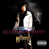 Se Escapó El Chapó Guzman by Los Buchones de Culiacan
