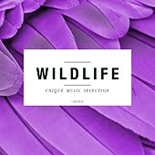 Wildlife - Unique Music Selection, Vol. 7 by Various Artists