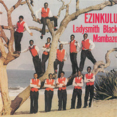Ezinkulu by Ladysmith Black Mambazo