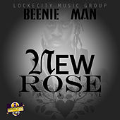 New Rose Dance - Single by Various Artists