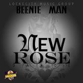 New Rose Dance - Single von Various Artists