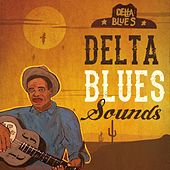 Delta Blues Sounds by Various Artists