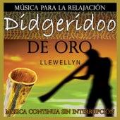 Didgeridoo de Oro: Música para la Relajación: Música Continua Sin Interrupción by Llewellyn