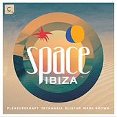 Space Ibiza 2015 (Mixed by Pleasurekraft, Technasia, Eli & Fur and Mark Brown) by Various Artists