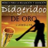 Didgeridoo de Oro: Música para la Relajación y Sanación by Llewellyn