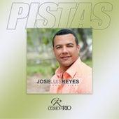 Pistas by Jose Luis Reyes