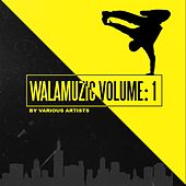 Walamuzic, Vol. 1 by Various Artists