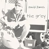 In the Grey by David James