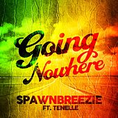 Going Nowhere (feat. Tenelle) by Spawnbreezie