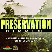 Preservation Riddim - EP by Various Artists