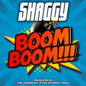 Boom Boom by Shaggy