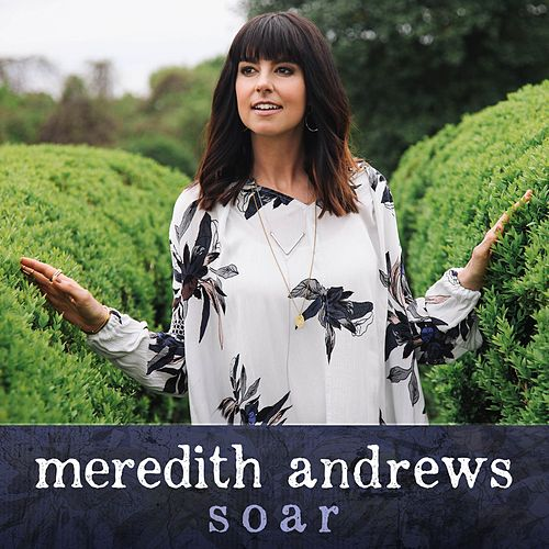 Soar by Meredith Andrews