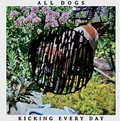 Kicking Every Day by All Dogs