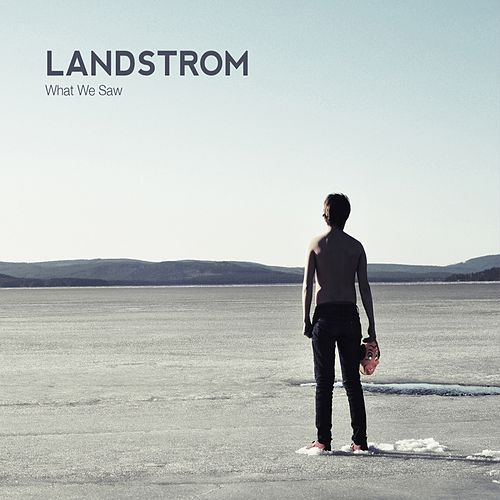 What We Saw by Landstrom