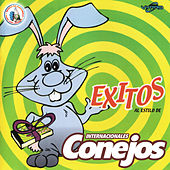 Exitos al Estilo de Internacionales Conejos. Música de Guatemala para los Latinos by Internacionales Conejos