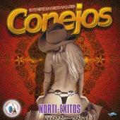 Norti - Exitos. Música de Guatemala para los Latinos by Internacionales Conejos