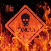 Danger by Blake