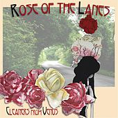 Rose of the Lanes by The Cleaners From Venus