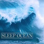 Sleep Ocean by Various Artists