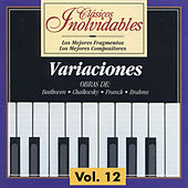 Clásicos Inolvidables Vol. 12, Variaciones by Various Artists