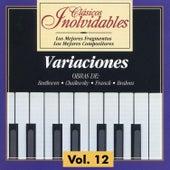 Clásicos Inolvidables Vol. 12, Variaciones by Various Artists