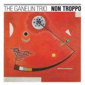 Non Troppo by The Ganelin Trio