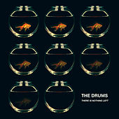 There Is Nothing Left by The Drums