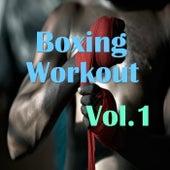 Boxing Workout, Vol.1 von Various Artists