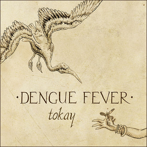Tokay by Dengue Fever