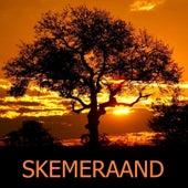 Skemeraand by Various Artists