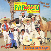 El Pelo en la Sopa by Paraiso Tropical