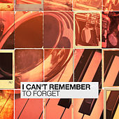 I Can't Remember To Forget by Various Artists