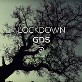 Lockdown - Single by Various Artists