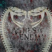 Anthem (2015) by Ashes of your Enemy