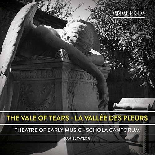 The Vale of Tears by Daniel Taylor