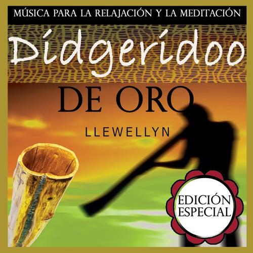 Didgeridoo de Oro: Música para la Relajación y la Meditación: Edición Especial by Llewellyn
