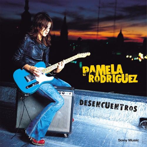 Desencuentros by Pamela Rodriguez