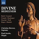 Divine Redeemer by Various Artists