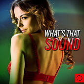 What's That Sound by Various Artists