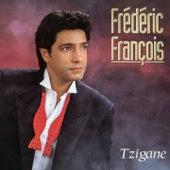 Tzigane by Frédéric François