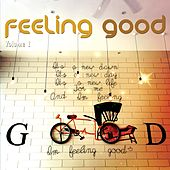 Feeling Good, Vol. 1 (Positive Chill Grooves) by Various Artists