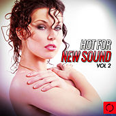 Hot for New Sound, Vol. 2 by Various Artists