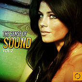 The Sense of Sound, Vol. 2 by Various Artists